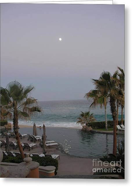Greeting Card featuring the photograph Cabo Moonlight by Susan Garren