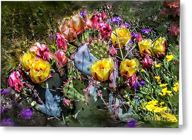 Cacti Flowers Painterly Greeting Card by Georgianne Giese