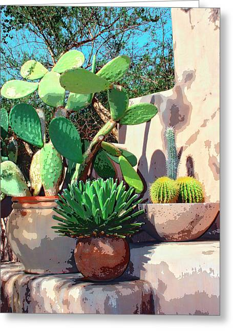 Cactus Corner Palm Springs Greeting Card by William Dey