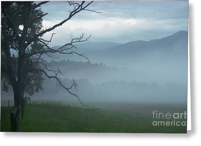 Cades Cove Fog Sunrise Greeting Card