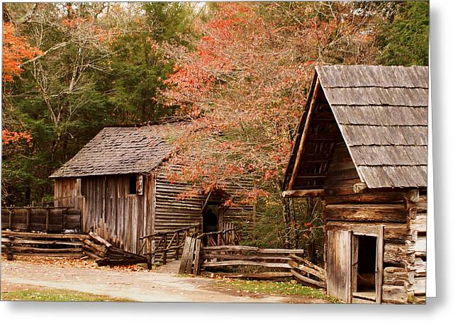 Cades Cove Grist Mill Greeting Card by TnBackroadsPhotos