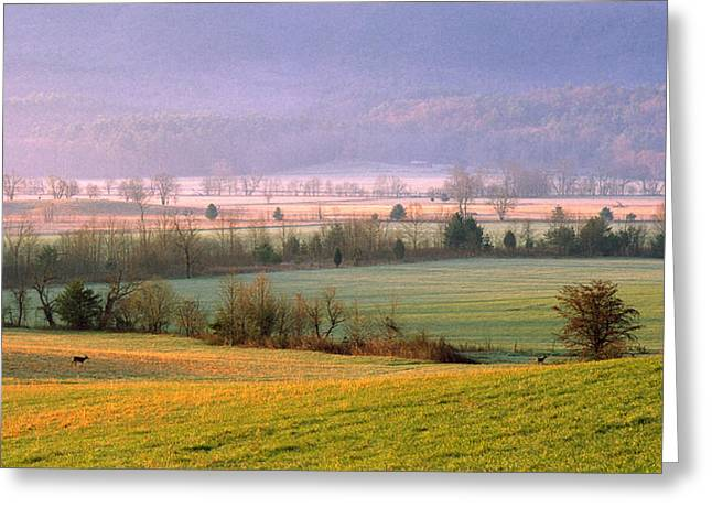 Cades Cove Morning Greeting Card by Wendell Thompson