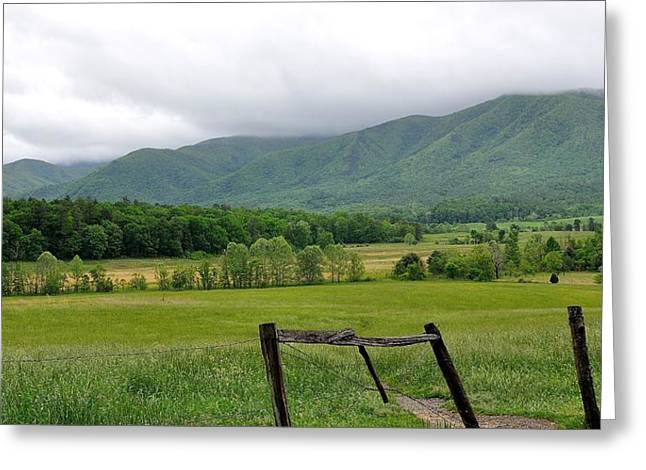 Cades Cove Mountains 1 Greeting Card by Todd Hostetter