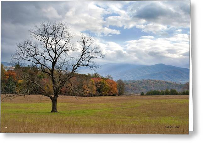 Cades Cove Greeting Card by Nian Chen
