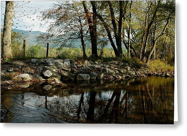 Cades Cove Summertime Greeting Card by John Saunders