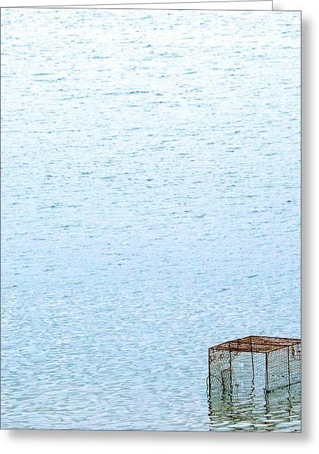 Caged Expanse Greeting Card by Kaleidoscopik Photography