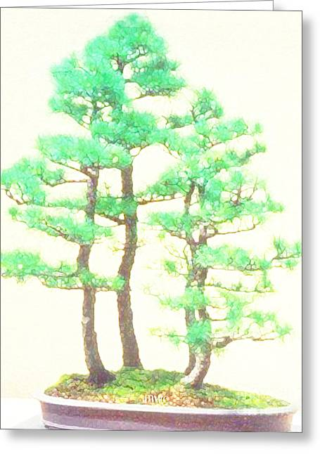 Caitlin Elm Bonsai Tree Greeting Card
