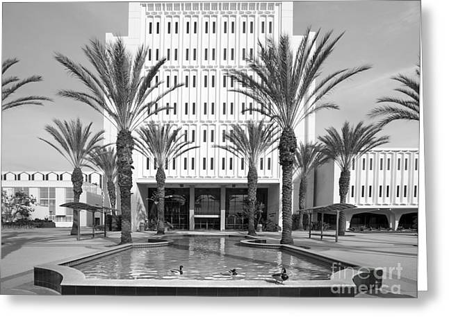 Cal State University Fullerton Langsdorf Hall Greeting Card by University Icons