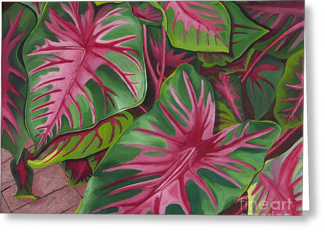 Caladiums Greeting Card