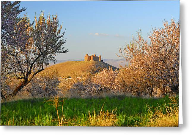 Calahorra Castle 1509 Greeting Card