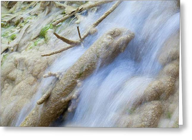 Calcareous Sinter In Stream Greeting Card by Dr Juerg Alean