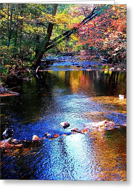 Greeting Card featuring the photograph Caledonia In Autumn by Angela Davies