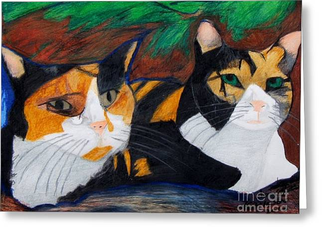 Calico Cats Greeting Card