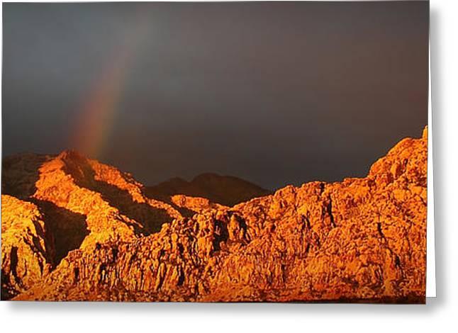 Calico Rainbow Greeting Card
