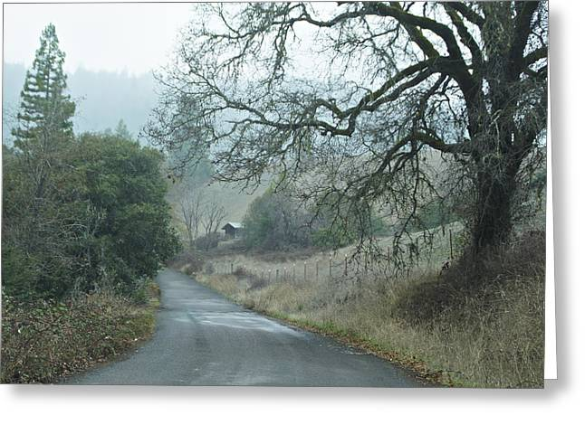 California Back Country Road Greeting Card by Judy  Johnson