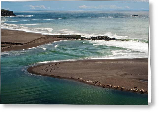 California Coast  Beach Seascape Panoramic Greeting Card by Julie Magers Soulen