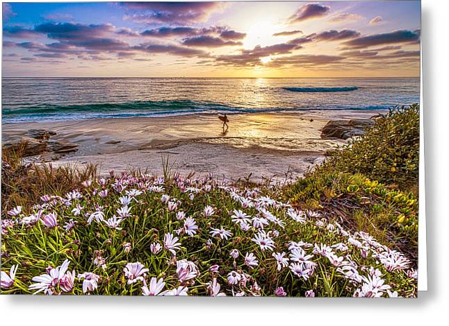 California Dreamin' Greeting Card by Justin Lowery