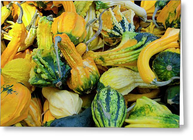 California Fruit Stand Autumn Harvest Greeting Card