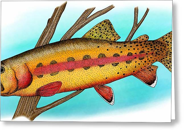 California Golden Trout Greeting Card by Roger Hall
