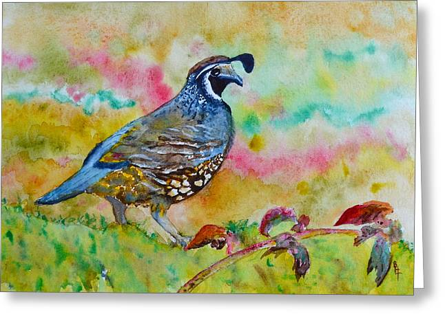 California Quail Greeting Card by Beverley Harper Tinsley