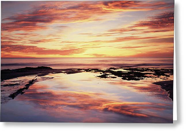 California, San Diego, Sunset Cliffs Greeting Card by Christopher Talbot Frank