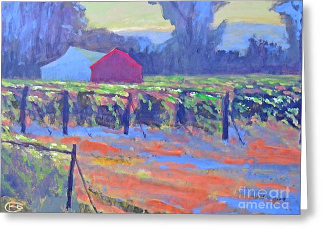 California Vineyard Greeting Card by Kip Decker