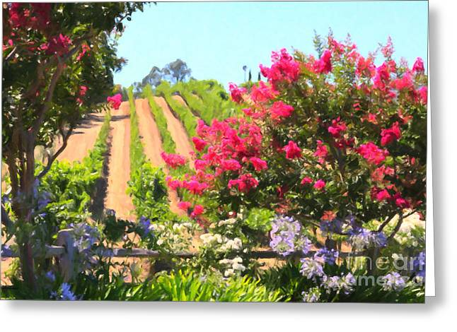 California Vineyard Wine Country 5d24495 Greeting Card by Wingsdomain Art and Photography