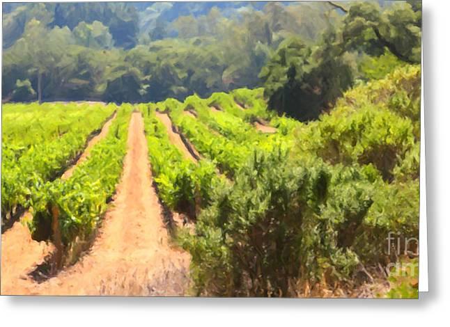 California Vineyard Wine Country 5d24518 Long Greeting Card