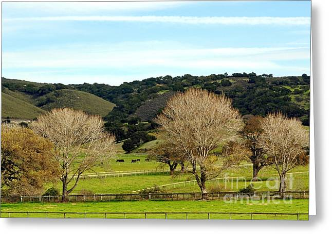 California Winter Landscape Greeting Card by Susan Wiedmann