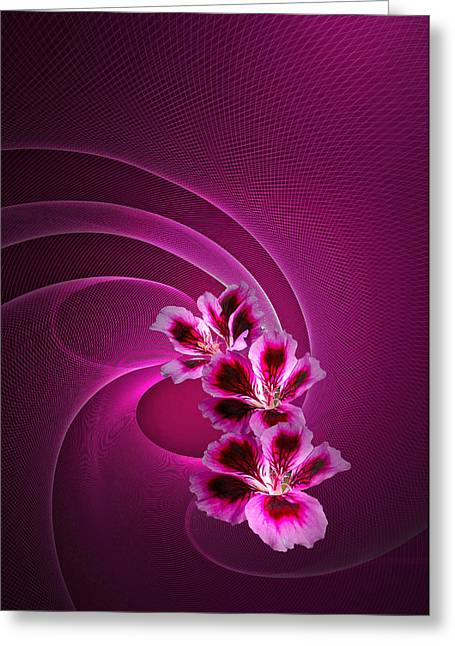 Greeting Card featuring the photograph Call Me Pink by Judy  Johnson