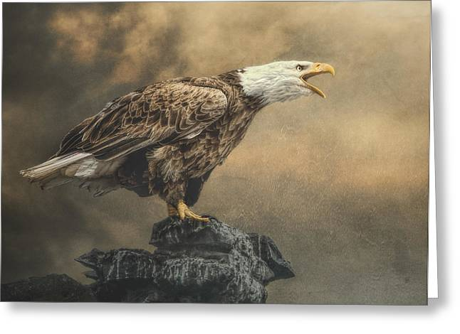 Greeting Card featuring the photograph Call Of The Wild by Brian Tarr