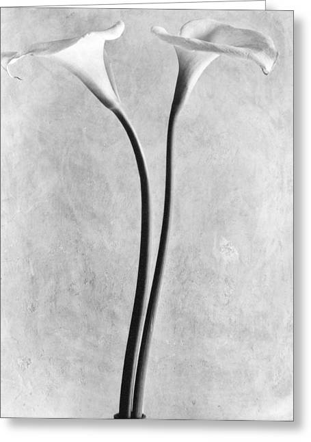 Calla Lilies, Mexico City, 1925 Greeting Card