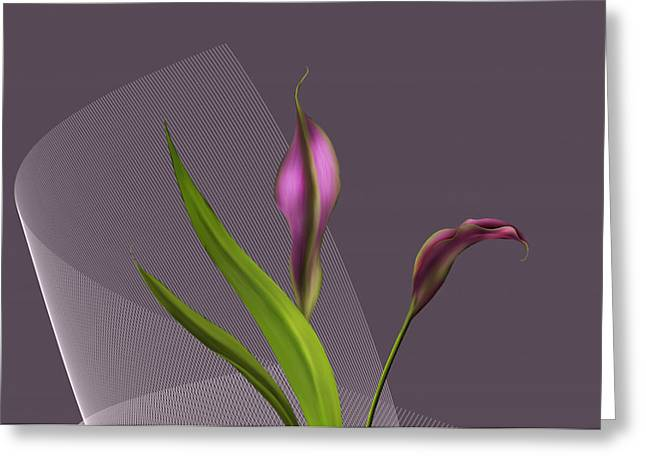 Calla Lillies Greeting Card