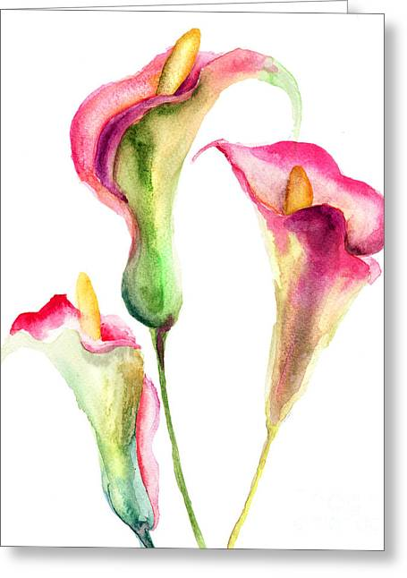 Calla Lily Flowers Greeting Card