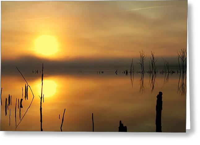 Calm At Dawn Greeting Card by Roger Becker