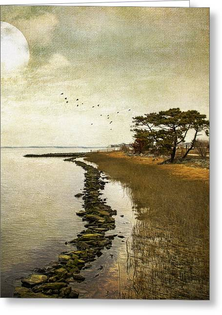 Calm At The Waters Edge Greeting Card