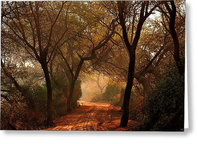 Calm Nature As Fantasy  Greeting Card by Manjot Singh Sachdeva