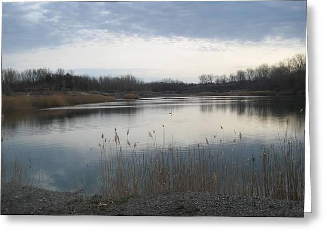 Calm Pond Greeting Card