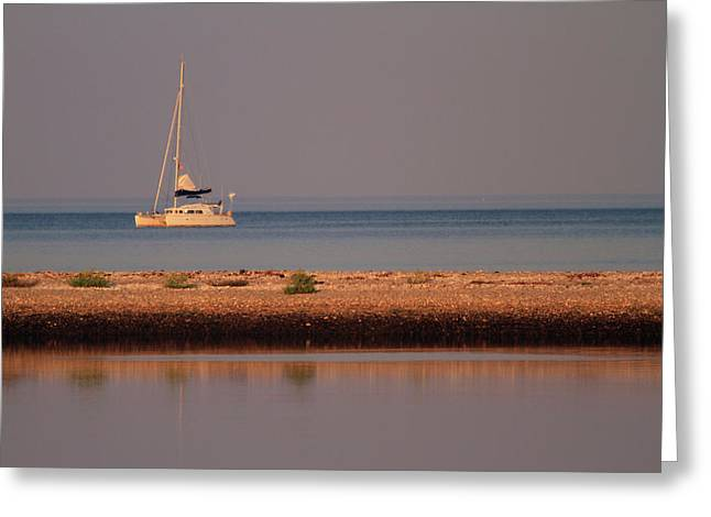 Calm Waters Greeting Card by Karol Livote