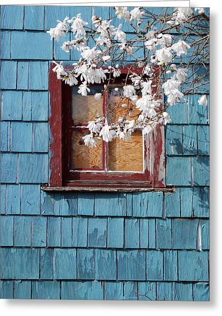 Greeting Card featuring the photograph Calming by Kjirsten Collier