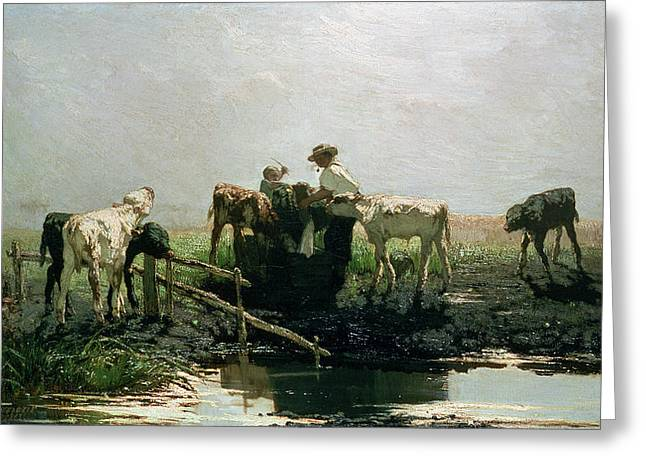 Calves At A Pond, 1863 Greeting Card by Willem Maris