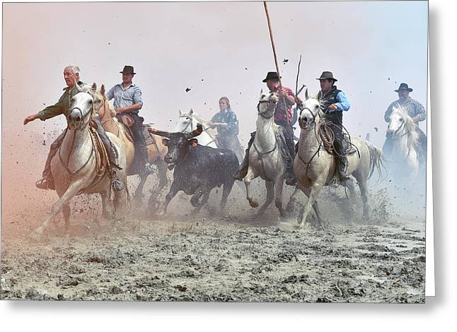 Camargue Cowboys And Bull Greeting Card by Dr P. Marazzi