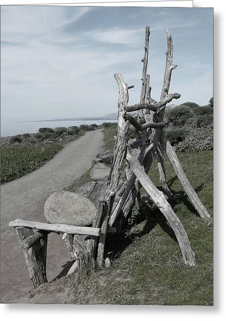 Cambria Driftwood Bench 2 Greeting Card by Sandra Selle Rodriguez
