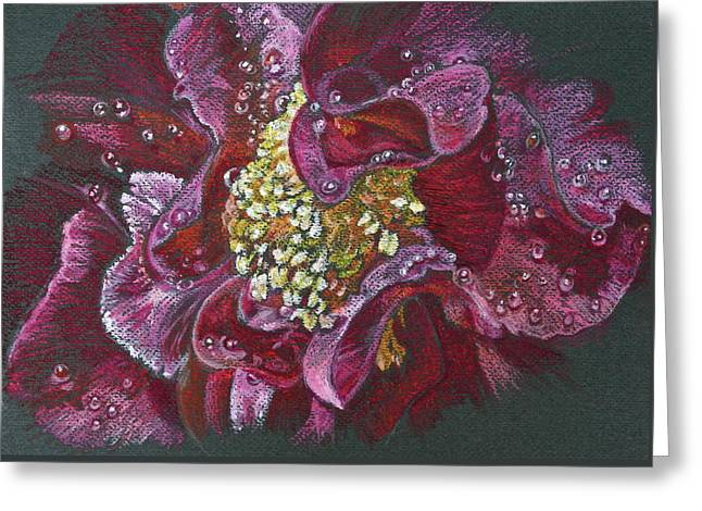 Camellia Rain Greeting Card