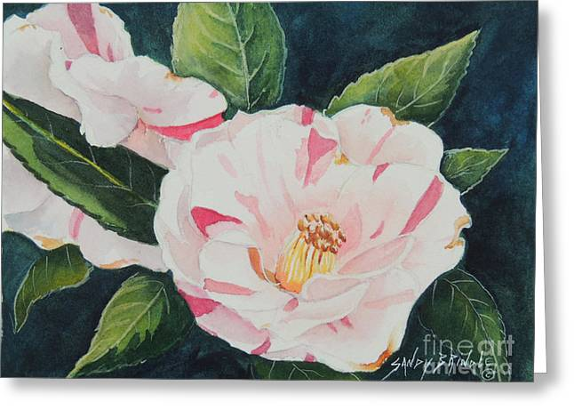 Camellia ...sold  Greeting Card