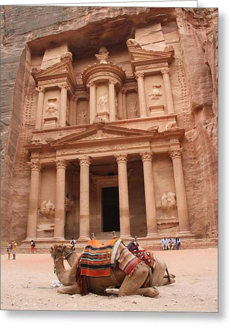 Camels In Petra Greeting Card by Rebecca Baker