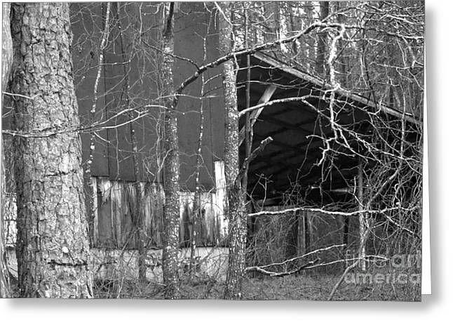 Camouflage Black And White Ver 1 Greeting Card by Affini Woodley