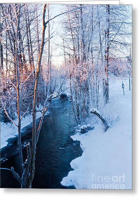 Campbell Creek In Hoarfrost Greeting Card