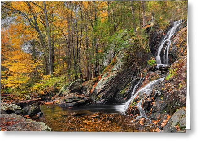 Campbell Falls Autumn Greeting Card by Bill Wakeley