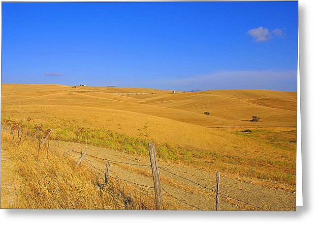 Wheat Fields Greeting Card